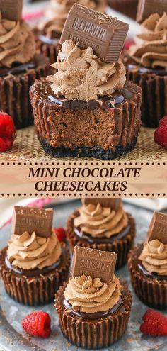 Mini Chocolate Cheesecake, Cheesecake Desserts, Mini Desserts, Chocolate Desserts, Just Desserts, Delicious Desserts, Chocolate Ganache, How To Make Desserts, Cooking Tips