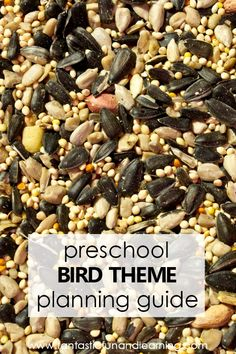 Plan your bird theme preschool activities with this helpful planning guide full of printable preschool lesson plans, bird activities, nonfiction videos, free printables and more for planning a bird theme study for kids. Lesson Plans For Toddlers, Preschool Lesson Plans, Preschool Activities, Funny Bird, Fall Preschool, Bird Theme, Fun Learning, How To Plan, Free Printables