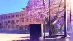 Anime Cherry Blossom Background for PC. Episode Backgrounds, Anime Backgrounds Wallpapers, Anime Scenery Wallpaper, Anime Artwork, Hd Wallpaper, Latest Wallpapers, Desktop Wallpapers, Scenery Background, Street Background