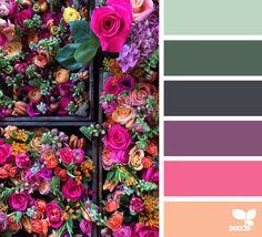 Flora brights color palette from Design Seeds Scheme Color, Colour Schemes, Color Patterns, Color Combos, Colour Palettes, Design Seeds, Exterior Colors, Exterior Paint, Pantone