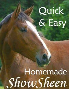 Easy Homemade Show Sheen Recipe | Savvy Horsewoman