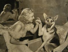 Happy New Year !!  May Every Dog Have a Loving & FOREVER Home - Every Dog!!  Please Adopt - Don't Shop!!!   Photo Ginger Rogers