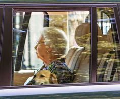 The life and times of Queen Elizabeth:Queen Elizabeth going to visit her new great-grandson, Prince George of Cambridge.