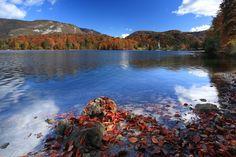 Autumn Activities In Slovenia! #slovenia #culinary #food #travelling #wanderlust #exploring #nature #love #fun #smile #beautiful