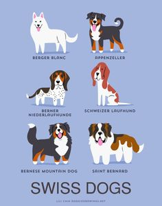 Designer Creates An Adorable Guide To The Dogs Of The World By Geographic Origin