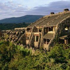 Ngorongoro Serena Lodge | Tanzania: Beyond the Serengeti, Great Migration, and Ultimate Tanzania Safaris | Boundless Journeys