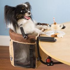 Pet High Chair ~   OMG, my F-I-L would love this for his little pooch.