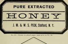 """Image from page 1266 of """"Gleanings in bee culture"""" (1874) 