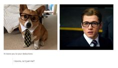 Wait I don't see a difference.... Ahaha, Eggsy is a little corgi! Man both are so cute <3w<3