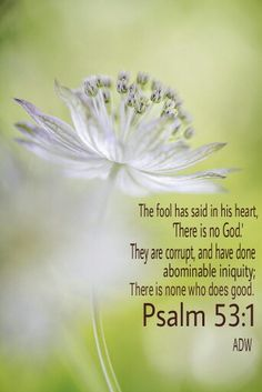 "Psalm 53:1.....The fool says in his art, ""There is no God.""  They are corrupt, and their ways are vile;  there is no one who does good."