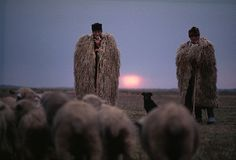 "Shepherds wear huge ""suba"" to escape autumn's chill.  by Albert Moldvay  Hortobagy Plain, Hungary"