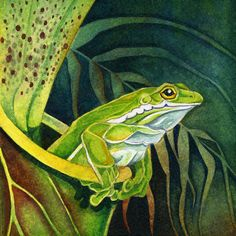 Print featuring the painting Frog In Pitcher Plant by Lyse Anthony