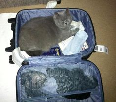 You are not leaving without me