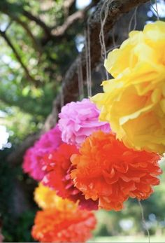 Katey Collection 5 Pom Poms Mexican fiesta by PaperwhiteDesigns
