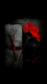 احدث خلفيات ايفون X Iphone Wallpapers Tumblr Color Splash Red Shades Of Red Black And Red