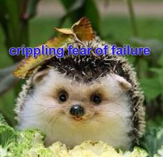 aaaah testing is coming up and i just can't take it all i've been faking it all year