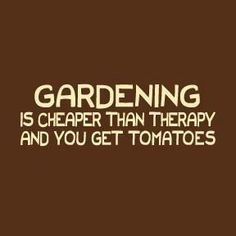 Cheaper than therapy........