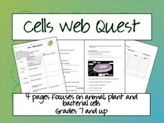 Cells Webquest! Awesome visuals. Compares animal, plant and bacteria cells.