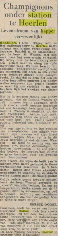 Nieuwsbericht over champignonkwekende kapper in station Heerlen