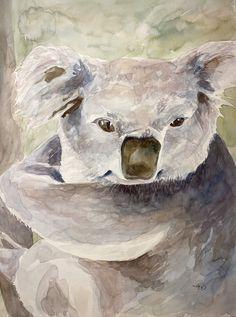 Koala-fication (Original) Watercolor Print, Watercolor Paper, Eye For Detail, Love Photos, Art Boards, Deer, Wildlife, Owl, The Originals