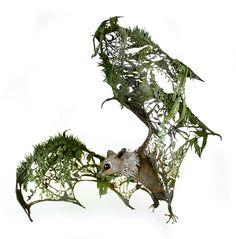 de-nouvelles-sculptures-surrealistes-d-animaux-meles-a-de-la-flore-par-Ellen-Jewett-4 de nouvelles sculptures surréalistes d'animaux mêlés à de la flore par Ellen Jewett