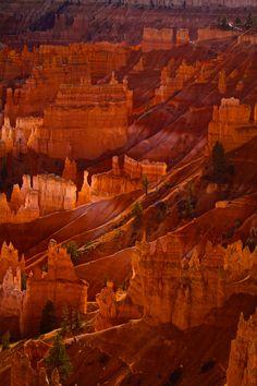 Bryce Canyon, Canyon Utah, Landscape Photography, Nature Photography, Scenic Photography, Photography Courses, Night Photography, Landscape Photos, Digital Photography