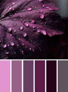 6 nuances de violet - color inspiration - Grey and shades of purple color inspiration , Grey and purple color inspiration ,purple and grey color schemes ,color palettes Purple Colour Shades, Purple Color Schemes, Purple Color Palettes, Room Color Schemes, Colour Pallette, Purple Grey, Purple Palette, Purple Paint Colors, Color Combos