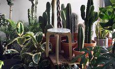 Terrazzo und Marmor Beistelltisch und Pflanze stehen