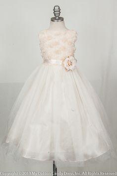 Champagne Bodice flower girl dress
