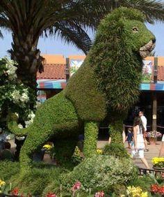 Grass lion sculpture at the entrance to Busch Gardens, Tampa, FL. Garden Hedges, Topiary Garden, Topiaries, Formal Gardens, Outdoor Gardens, Modern Gardens, Japanese Gardens, Small Gardens, Amazing Gardens