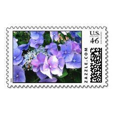 Hydrangea flowers Postage Stamps