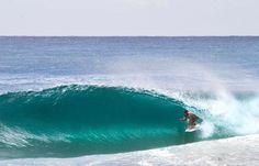 » Surf
