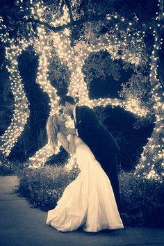 Los arboles son excelentes accesorios para la decoracion de tu casamiento