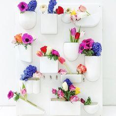 Flower wall  • @littlebigbell