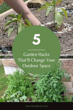 5 Garden Hacks That'll Change Your Outdoor Space - HomyBuzz #homybuzz #gardenhacks #fall #halloween #gardening