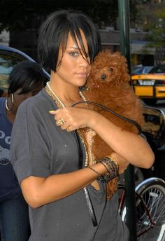 Rihanna with her toy poodle. Cute dog but I cannot stand it when poodles don't have a groomed face