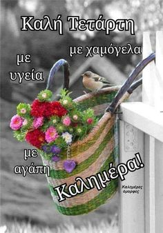 Good Night, Good Morning, Beautiful Pink Roses, Morning Pictures, Greek Quotes, Happy Day, Cross Stitch, Anastasia, Google