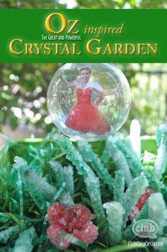 Borax Crystal Craft Idea inspired by Disney OZ the Great and Powerful Borax Crystals, Diy Crystals, Bubble Crafts, Bubble Fun, Disney Diy, Disney Crafts, Crafts To Make, Crafts For Kids, Crystal Garden