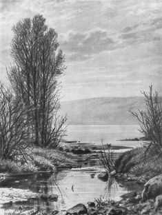 Берег озера (1884) — Иван Иванович Шишкин