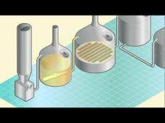 SABMiller brewing process.
