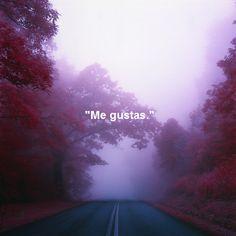 Hola, en mi camino Me gustas!