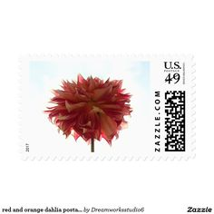 red and orange dahlia postage stamps