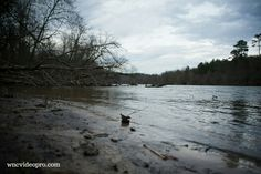 Looking downstream on the bank of the French Broad River in Asheville, North Carolina.