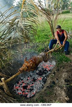 Not only do the women cook but the men as well. they take on the heavy work such as killing a pig with a group of men and carrying it down the streets until they bring it to a place where they can cook it. Eating pigs is usually when there is a celebration in Cuba