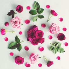 Find images and videos about pink, flowers and rose on We Heart It - the app to get lost in what you love. Arte Floral, Flower Rangoli, Bloom, Flat Lay Photography, Flower Photography, Flower Backgrounds, Flower Art, Flower Bomb, Floral Arrangements
