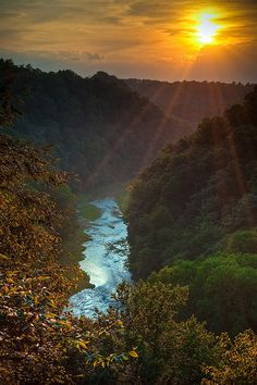 Burgess Falls, Waterfalls, River, Outdoor, Outdoors, Outdoor Games, The Great Outdoors, Rivers, Falling Waters