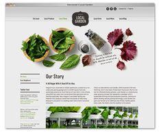 Peter Ladd | Design & Creative