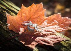 leafs and rings Wedding Story, Wedding Photos, Silver Rings, Image, Wedding Pics, Wedding Shot, Bridal Photography, Wedding Photography, Wedding Pictures