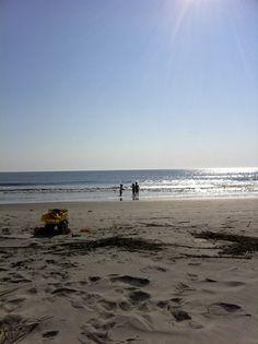 Hunting Island beach, Beaufort SC