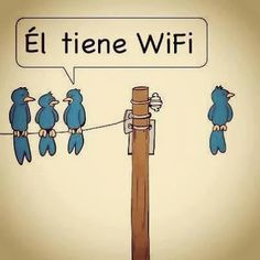 Frases, chistes, anécdotas, reflexiones, Amor y mucho más.: Chistes con animales, el pajarito del Wifi.